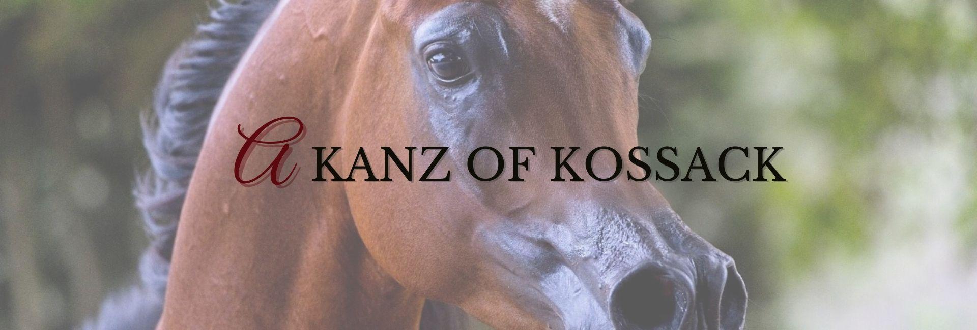 A Kanz of Kossack