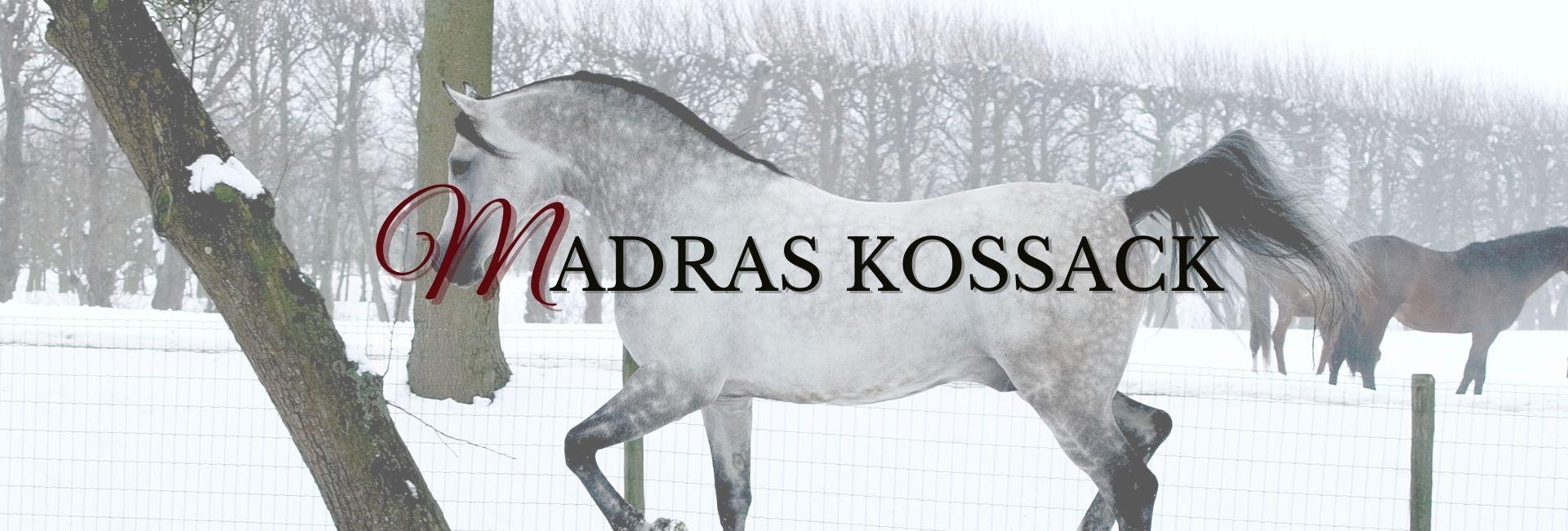 Madras Kossack